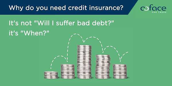 Why do you need credit insurance?